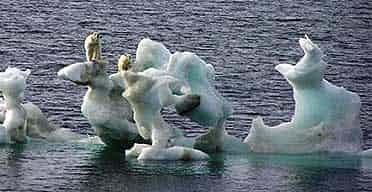 Canadian ice service.jpg